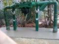 IMG_20110610_092039